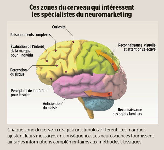 01Net Neuromarketing